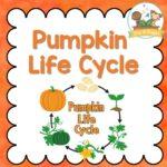 Pumpkin Life Cycle Activities for Preschool